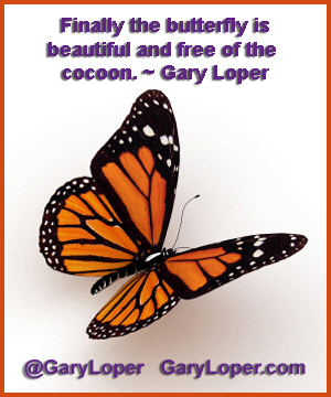Butterfly is beautiful and free of the cocoon
