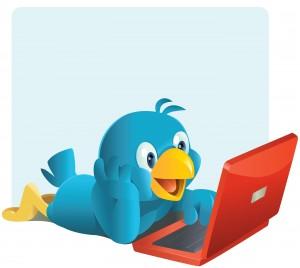 twitter bird at computer