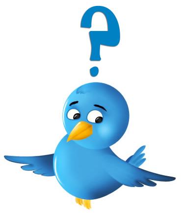Confused Twitter Bird